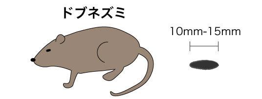 画像に alt 属性が指定されていません。ファイル名: ドブネズミのコピー-1.jpg