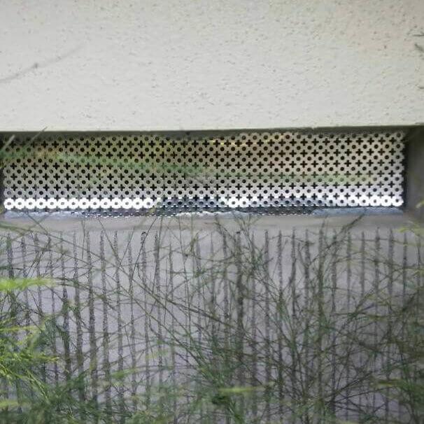 松戸市ネズミ駆除対策