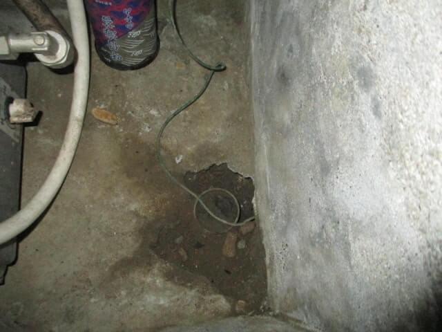 さいたま市ネズミ駆除の作業事例8