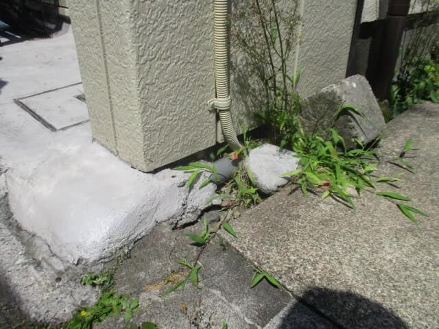 川崎市麻生区のネズミ駆除