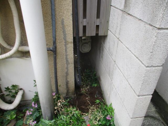 品川区のネズミ駆除の作業事例